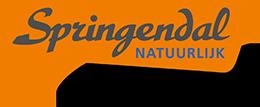 Logo Springendal